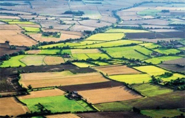 Сокращение расстояния от границы земельного участка является ли существенным нарушением правил застройки